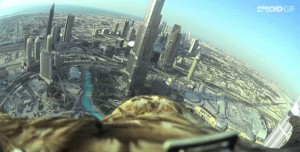 Birds Eye View of Dubai Captured from an Imperial Eagle's Back