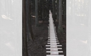 Hokkaido Garden of Sound: Ball and Xylophone Music Amid the Forest