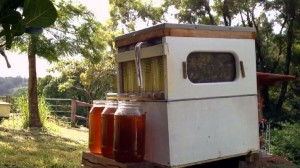 "A Fresh Honey Vendo ""Machine"" That Really Isn't a Machine. See How It Operates!"