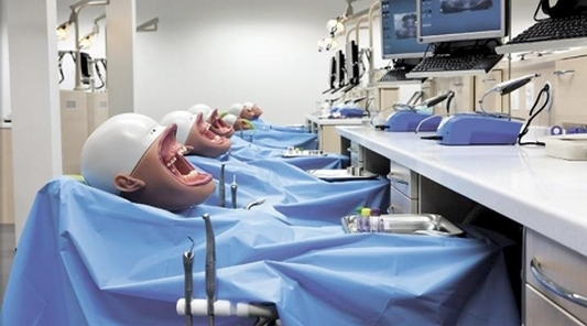 Dental Mannequins that Can Also Pass Off as Horror Booth Dummies