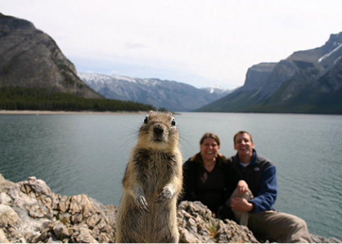 couple photo but a squirrel insisted to be in front of them